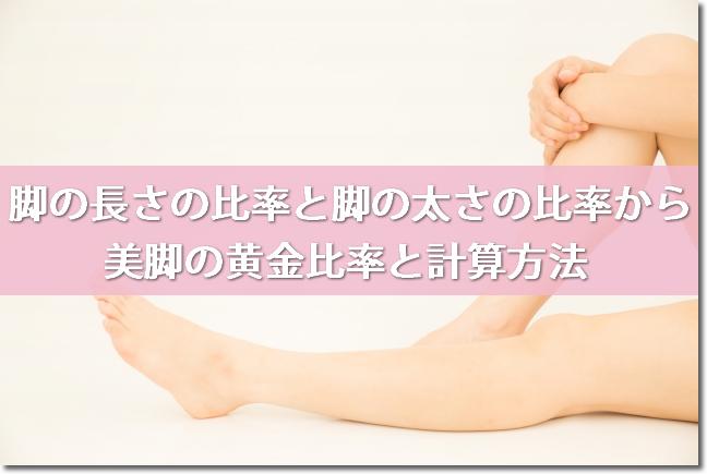 脚の長さの比率と脚の太さの比率から美脚の黄金比率と計算方法